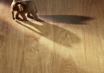 Parkett Holzdielen Holzfussboden